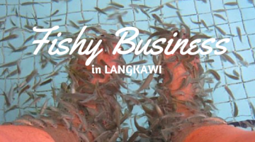 Fishy Business in Langkawi