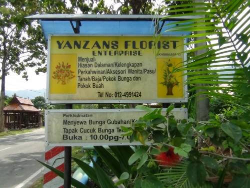 Yanzans Florist