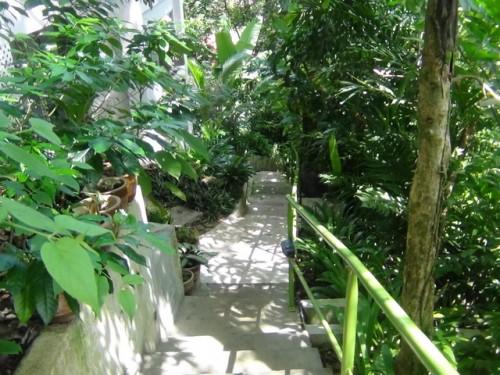 Ambong-Ambong Rainforest Retreat