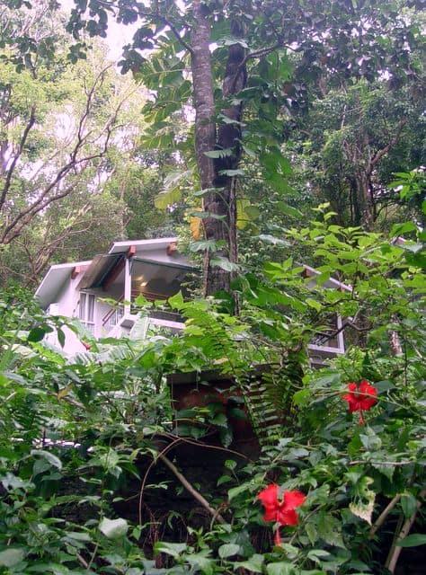 Ambong Ambong Rainforest Retreat