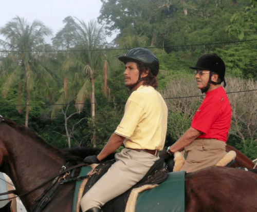 Langkawi's Island Horses