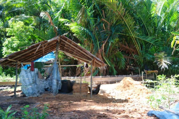 What I Learned On A Day Trip To Saparua Island