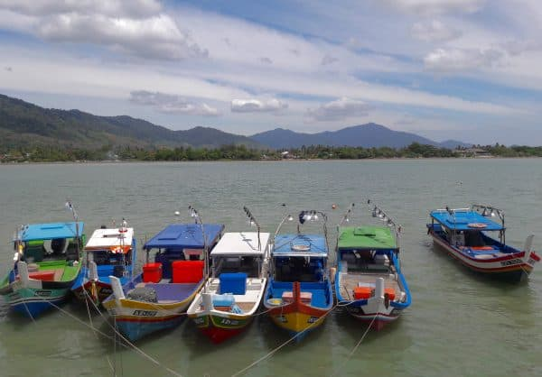 Choosing Langkawi Homestays or Kampung Stays