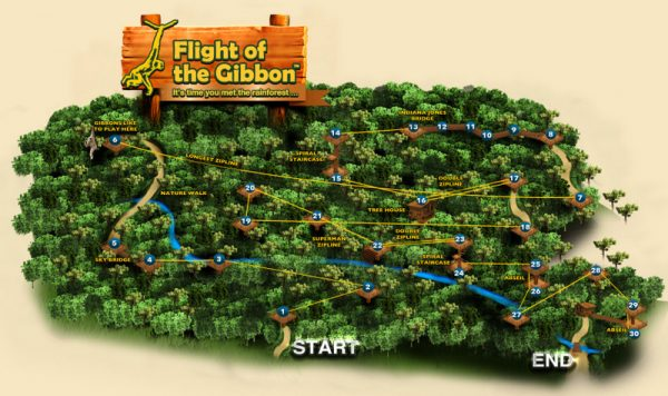 Flight of the Gibbon zipline