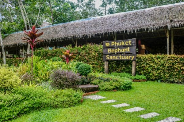 Best Phuket Elephant Sanctuary