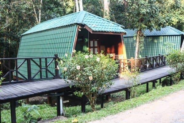 Best Jungle Resorts in Sabah, Malaysia
