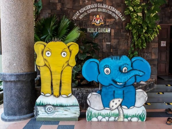 Should You Visit Kuala Gandah Elephant Sanctuary?